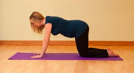 Cat stretch yoga pregnancy